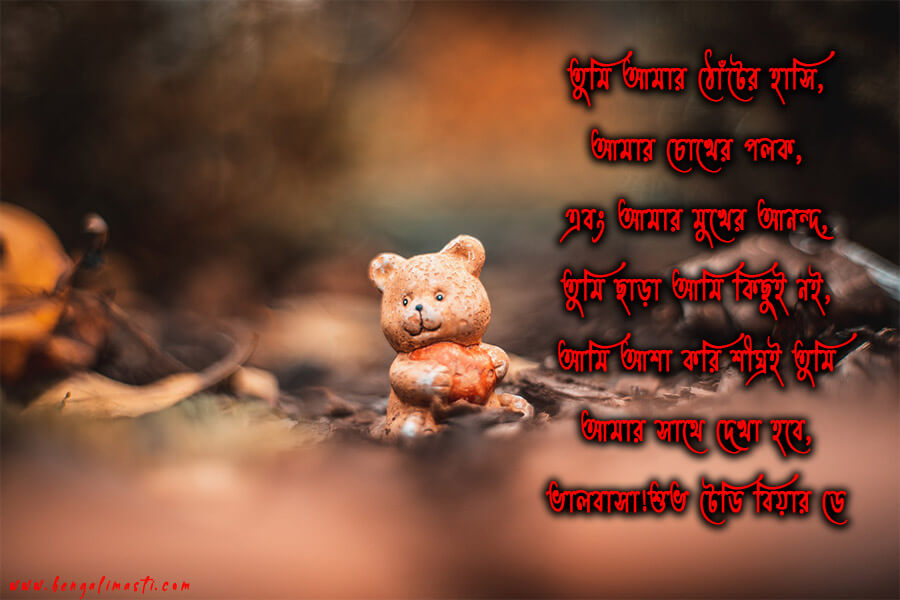 Happy Teddy Day SMS in Bengali