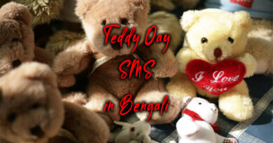 Teddy Day SMS in Bengali