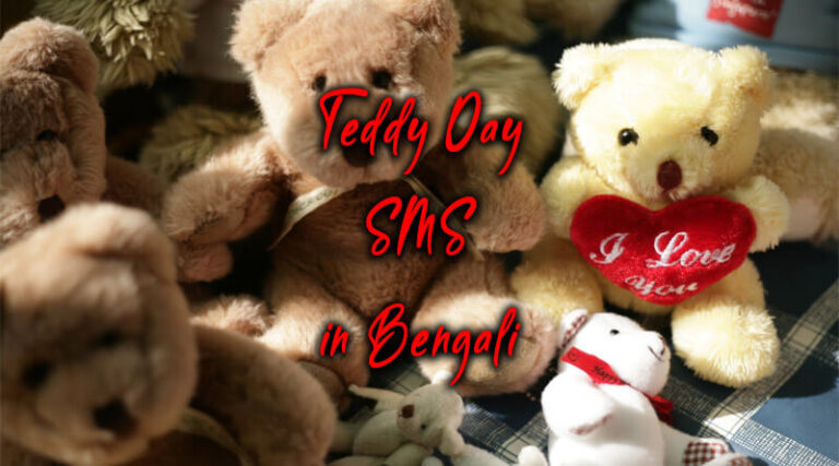 10+ Teddy Day SMS in Bengali 2021
