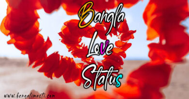 bangla love status image